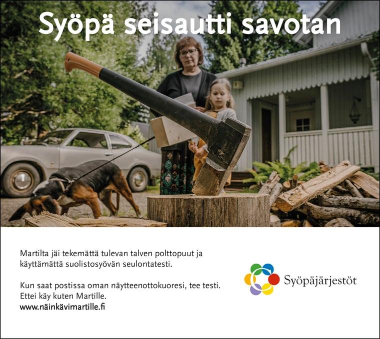 Martti-kampanjan lehti-ilmoitus, kirves puupölkyssä